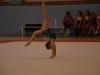 acad-gym-juin-2014-010
